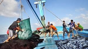 Quyết định số 2764/QĐ-BTC về việc chấp thuận doanh nghiệp bảo hiểm triển khai bảo hiểm khai thác hải sản